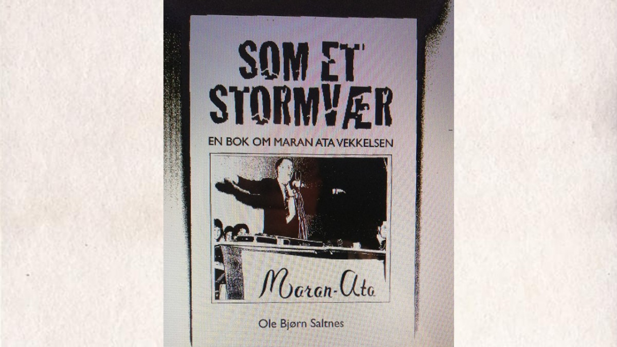 You are currently viewing Som et stormvær